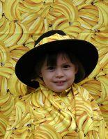 phoca_thumb_l_bananenfoto47
