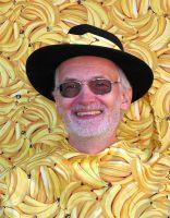 phoca_thumb_l_bananenfoto50